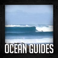 ocean guides fuerteventura