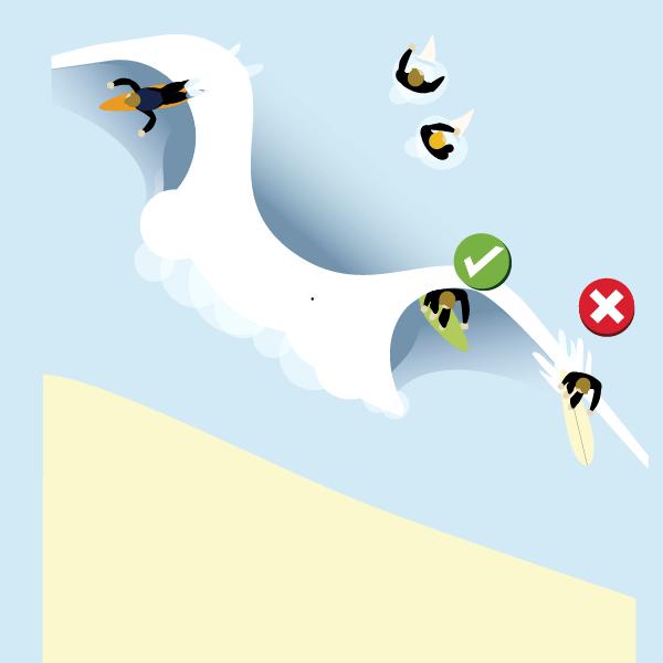 surfing localism