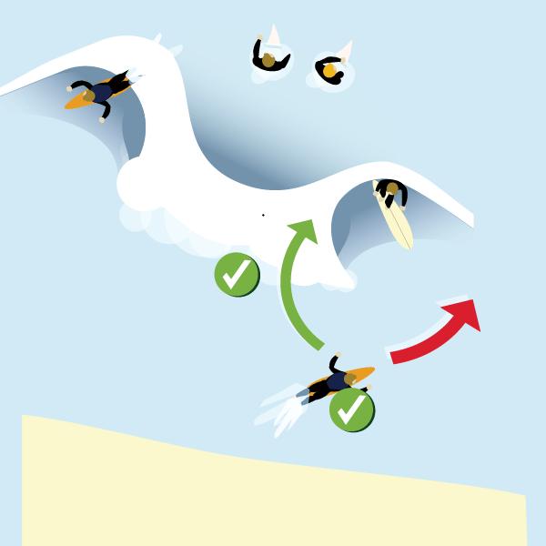 duck dive bro